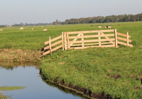 Vlinderliefhebbers uit heel Nederland…